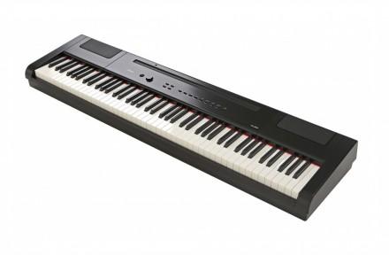 Цифровое фортепиано Artesia PA-88H: фото